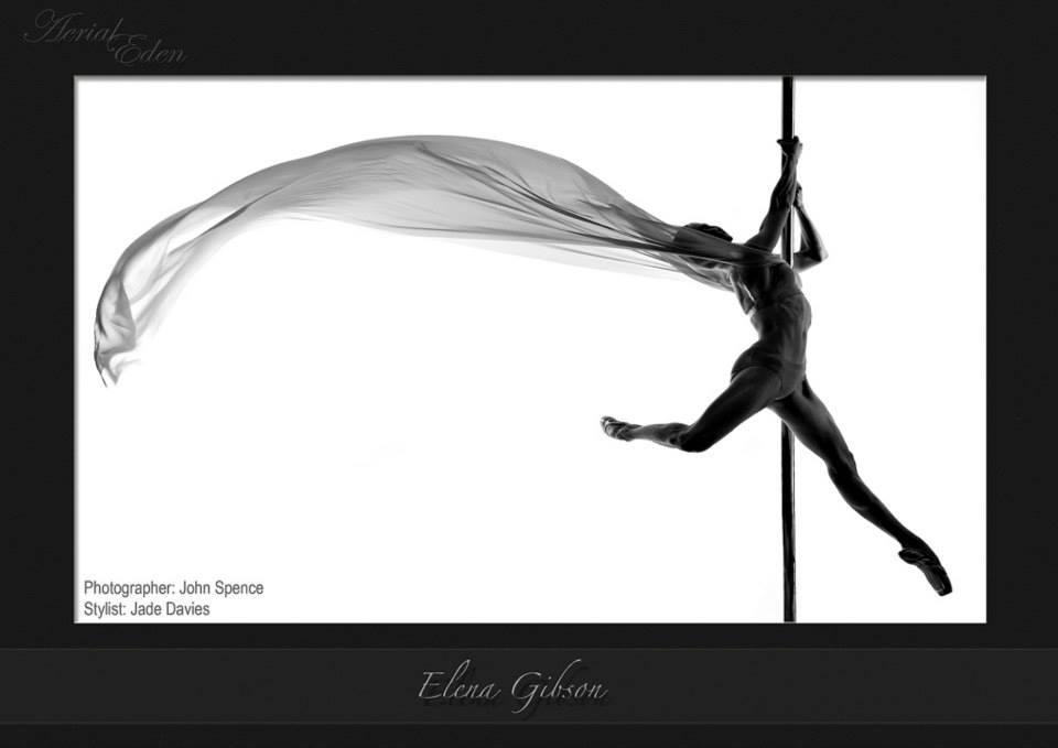 AERIAL EDEN 2014 Pole and Aerial Art Calendar
